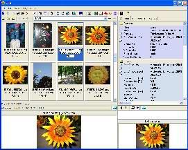 Exifer for Windows 2.1.5